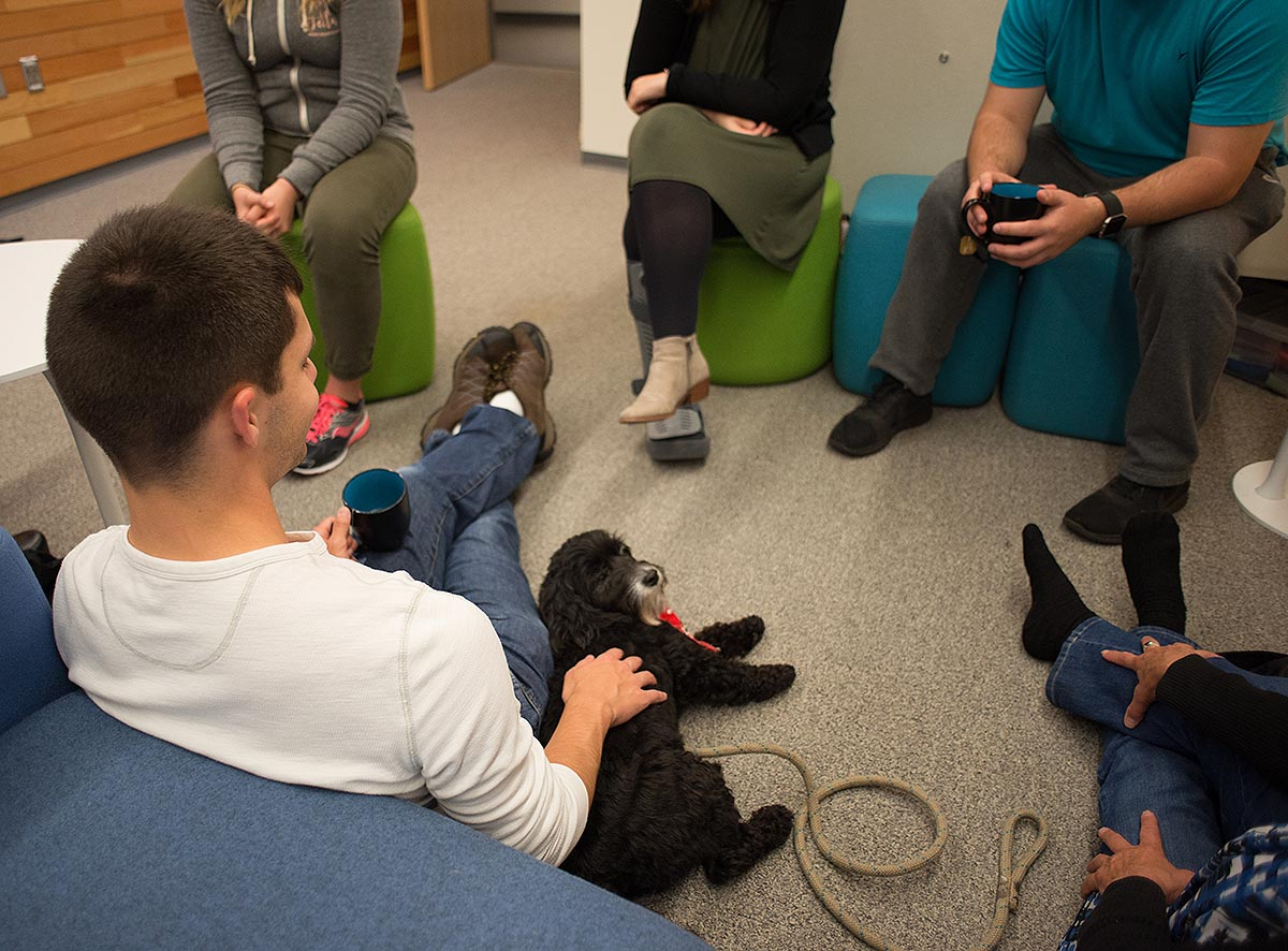 Students relax while petting therapy dogs at the Duck Nest